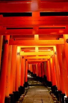 Inside the Fushimi Inari shrine