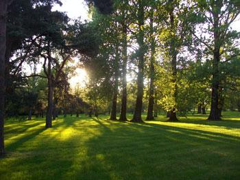 Parnu park