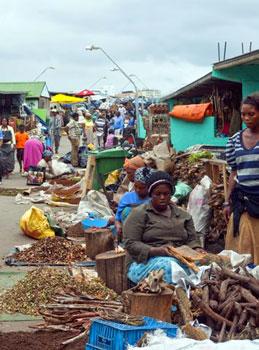 dried fish at Durban street market