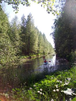 Canoeists in Viikki inlet