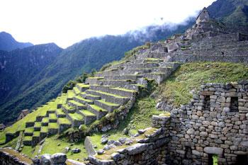 terraced hillside at Machu Picchu