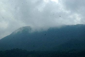 fog above Sapa