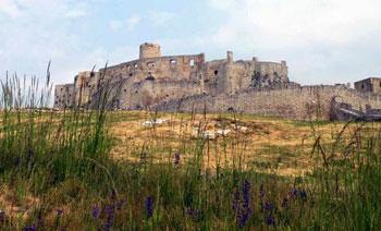 Spis castle ruins