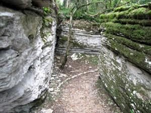 limestone strata