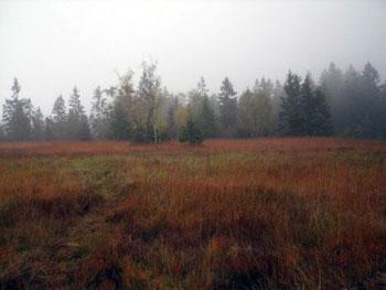 Entlebuch Moors