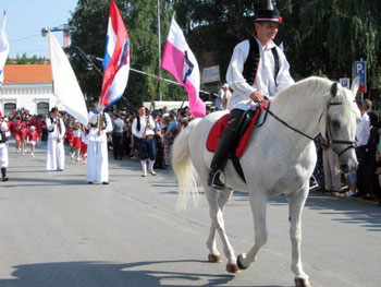 horse and rider in Ðakovo parade