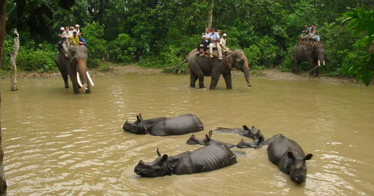Chitwan Wildlife Sanctuary