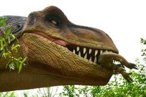 dinosaur replica head