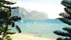 Lord Howe island beach