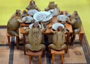 Frog display in museum