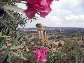 Greek ruins on Sicily