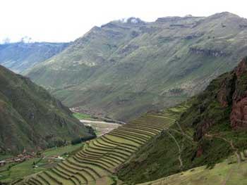 terraced hillside in Pisac Peru