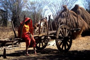 woman on hay wagon