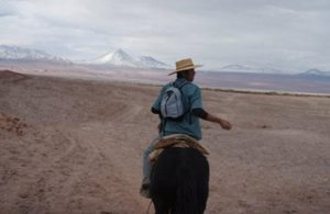 guide, David, on horseback