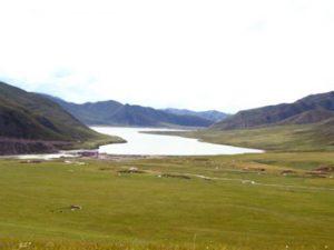 grasslands of Tibet
