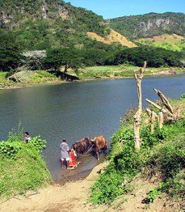 Sitatoka River, Fiji