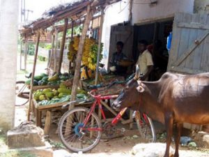 market in Sri Lanka village