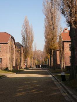 Auschwitz street