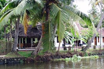 Kerala backwaters scenery
