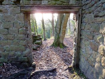 view through a doorframe