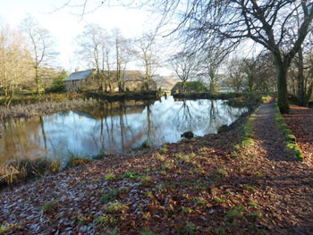 last surviving mill pond