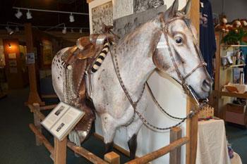 Horse in museum exhibit