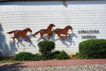 Appaloosa Museum signage