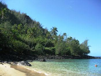 Kaua'i waterfront shoreline
