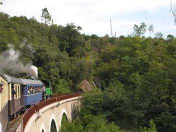 train on trestle bridge