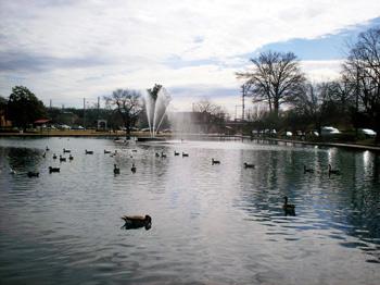 Fountain City lake