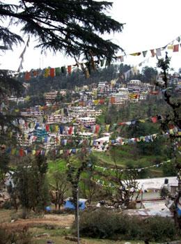 Buddhist prayer flags in Dharamsala