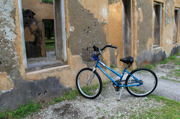 bicycle outside Horton House
