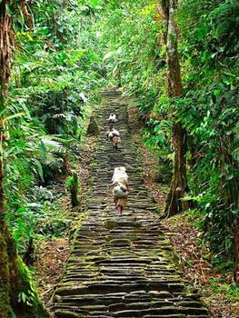 steep stairway near village
