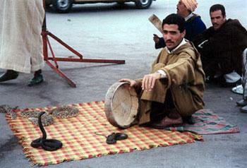 snake charmer on Marrakech street