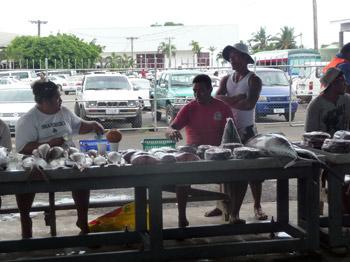 Apia fish market