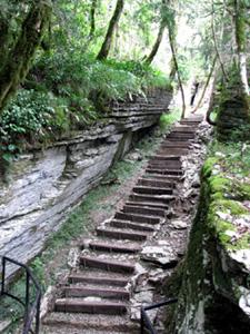 pathway steps