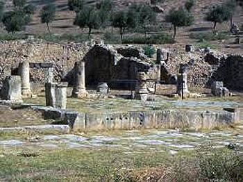 Bath of Julia Memmia