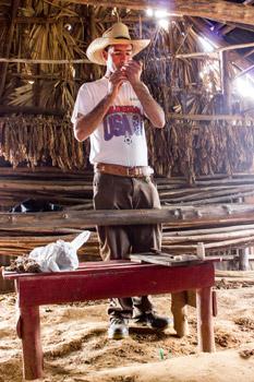 tobacco farmer giving demonstration