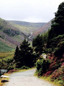 Glendalough park road