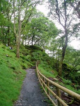 walkway to Glendalough