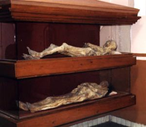 mummies in museum