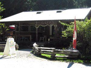 Rigger's pub and bistro, Savary Island