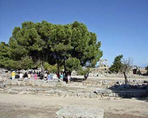 Corinth marketplace