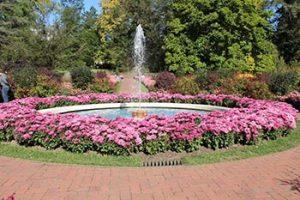 fountain in Longwood flower garden