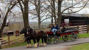 shaker horse-drawn wagon