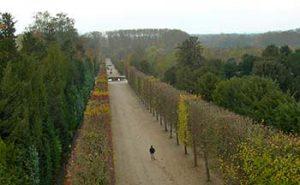 Path Versailles to Petit Trianon