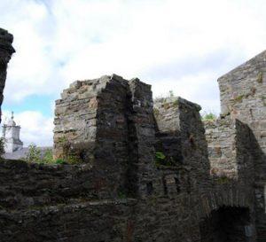 Desmond Castle walls