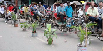 Dhaka cycke rickshaws