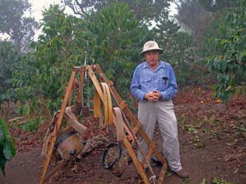 Kona coffee grower