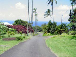 Road to Paauhau